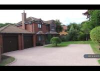 5 bedroom house in Woodcroft Avenue, Aberdeen, AB22 (5 bed)