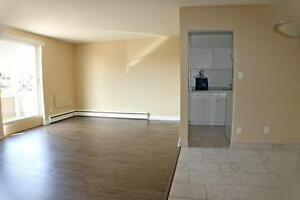 Sarnia 2 Bedroom Apartment for Rent near Bayside Mall, Shopping
