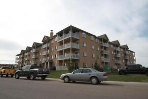 Fully Furnished Condo with Underground Parking-Available July 1