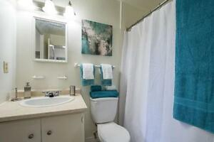 Modern Renovated One Bedroom in Strathroy - New Kitchens! London Ontario image 9