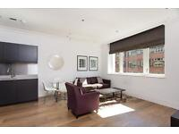 1 bedroom flat in Sterling Mansions, 75 Leman Street Tower Hill E1