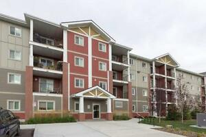 New LUXURY Windermere Apartments for Rent! MUST SEE!