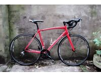 SPECIALIZED ALLEZ 2013, 21 inch large size, racer racing road bike, 18 speed