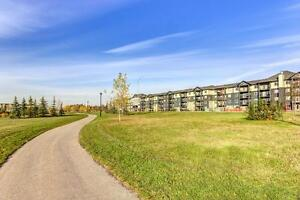 Building 55- We will assist with your move! Edmonton Edmonton Area image 8