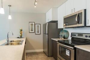 In-Suite Laundry 1 & 2 Bedroom Apartments for Rent