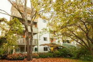 2 Bdrm available at 443 Superior Street, Victoria