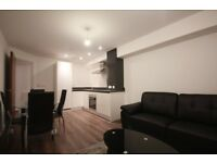 Modern 1 bed flat to rent in Harlesden-Part DSS