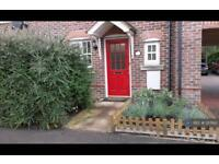2 bedroom house in Acorn Gardens, Reading, RG7 (2 bed)