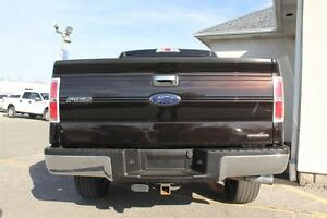 2013 Ford F-150 XLT Windsor Region Ontario image 4