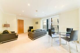 2 BEDROOM 2 BATH APARTMENT GREAT LOCATION! MANSION HOUSE CANNON STREET THE STRAND THE CITY ST PAULS
