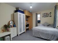 URGENT ENSUITE ROOM AVAILABLE NOVEMBER 110pppw