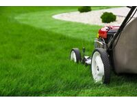 Grass Cutting / Hedge Cutting Services
