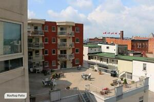 2 Bedroom Stratford Apartment for Rent: Non-Smoking, Downtown Stratford Kitchener Area image 15