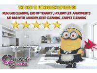 HOLIDAY, APARTMENT, REGULAR, DOMESTIC, CARPET CLEANING,END OF TENANCY,AIR BNB, DEEP, EDINBURGH,