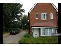 3 bedroom house in Damson Way, Carshalton, SM5 (3 bed)