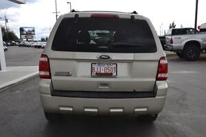 2011 Ford Escape XLT | Cruise Control | Lots of Cargo Space! | Edmonton Edmonton Area image 15