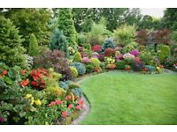 AVON GARDENS ( FULLY INSURED )