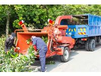 gardening lawns hedges tree chopping mowing shredder chipper and waste disposal prune trees