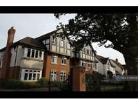 1 bedroom flat in Blossomfield Road, Solihull, B91 (1 bed)