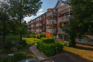 Beau 3 1/2 avec vue sur la cour avec les arbres dispo mi-mai Québec City Québec image 2