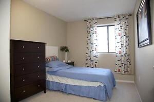 St. Thomas 1 Bedroom Apartment for Rent: Pet friendly, elevator