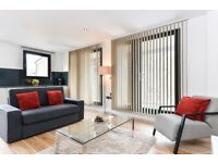 Modern 2bed/2bath apartment*Tower Bridge*3 months min*Fully furnished