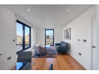 Modern 1 Bed Flat in Bow, close to Canary Wharf, E14, next to Park, Private Terrace- SA
