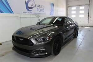 2015 Ford Mustang GT PERFOMANCE PACK RECARO