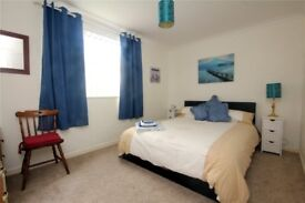 Perfect double room, minutes away from London Bridge!! perfect for commuters!