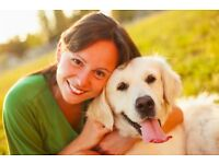 Would you like to become a pet sitter on Pawshake? Sign up today! Free Insurance incl