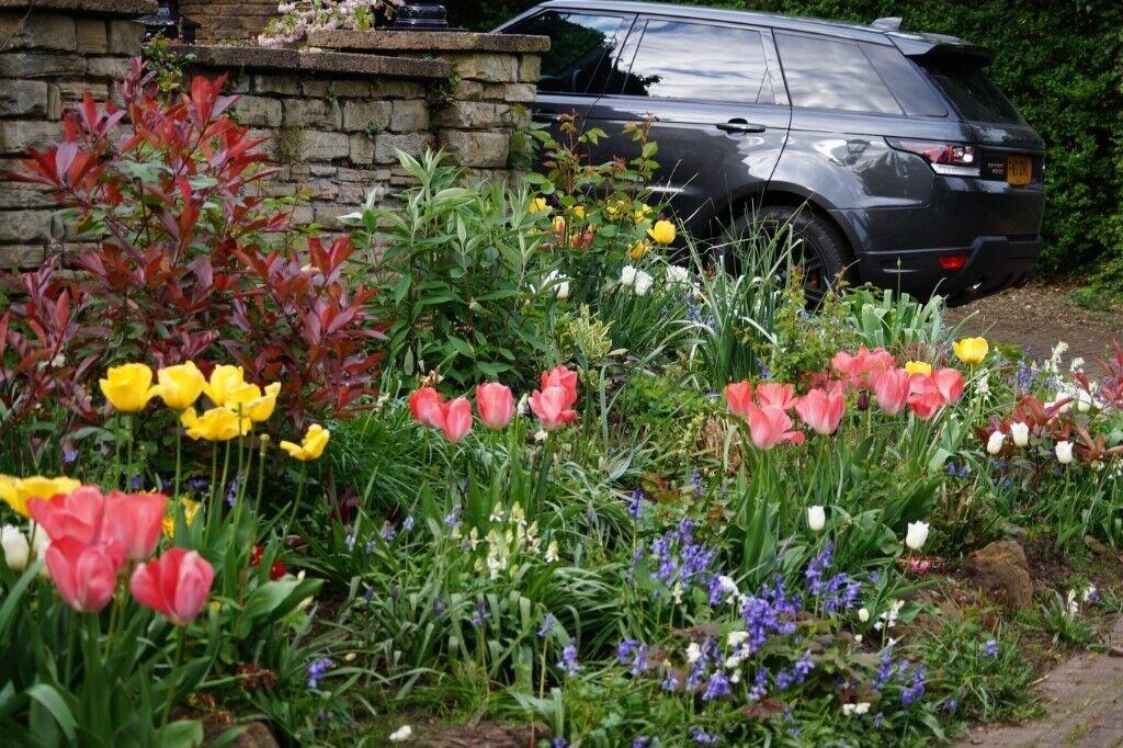 Gardener, Conservationist And Garden Designer, J.K Conservation Projects   Landscape  Gardener     In Wollaton, Nottinghamshire   Gumtree
