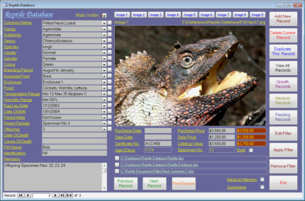Reptile Collector Image Database Software CDROM suit Windows Bardwell Park Rockdale Area Preview