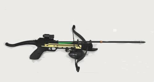 Crossbow Fishing  Bow w/ Red Laser - Fishing Arrow - Reel