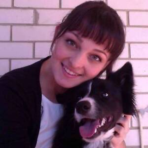 Doggy Walking and Playtime Service - $20/hour/doggy Mandurah Mandurah Area Preview