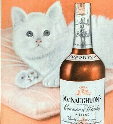 1950 Mac Naughton's Whiskey White Cat With Blues Illustration Vintage Paper Ad