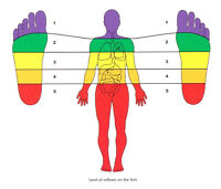 Reflexology! Start a new career in Brandon.