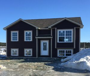 Beautiful 2 apartment home on a corner lot in St. John's