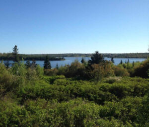 Affordable Waterfront Property in Cow Bay