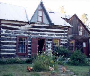 Quaint little log cabin, rustic, on private acreage