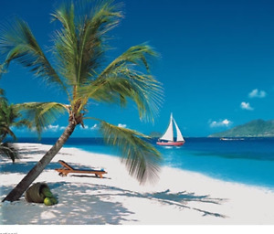 St. Vincent/Grenadines Vacation