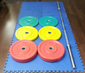 Rogue York B&R Olympic Bar Rubber Color Bumper Plate Set