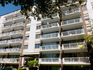 Acadian Apartments - 1 Bedroom Apartment for Rent