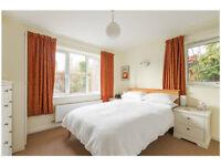 1 Bedroom (2 room) on Adams Road