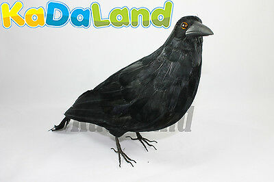 Black Crow Realistic Horror Haunted Halloween Raven Bird Crows Taxidermy Furry L