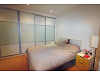 Superb 1 Bedroom Flat-High Standard-Large Double bedroom-Fully Furnished-Available from 31st October
