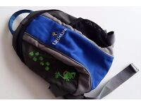 LittleLife backpack