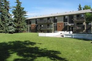 Mountainview Apartments - Bachelor Apartment for Rent