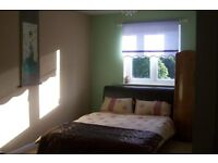 Double Room in Comfortable Flat