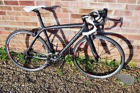 wilier cento 1 carbon fibre road bike / racing bike 11 speed