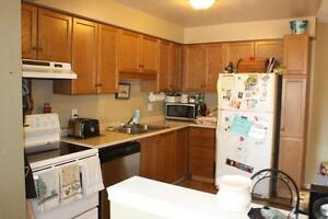 BEAUTIFUL END UNIT TOWN HOUSE Cambridge Kitchener Area image 3